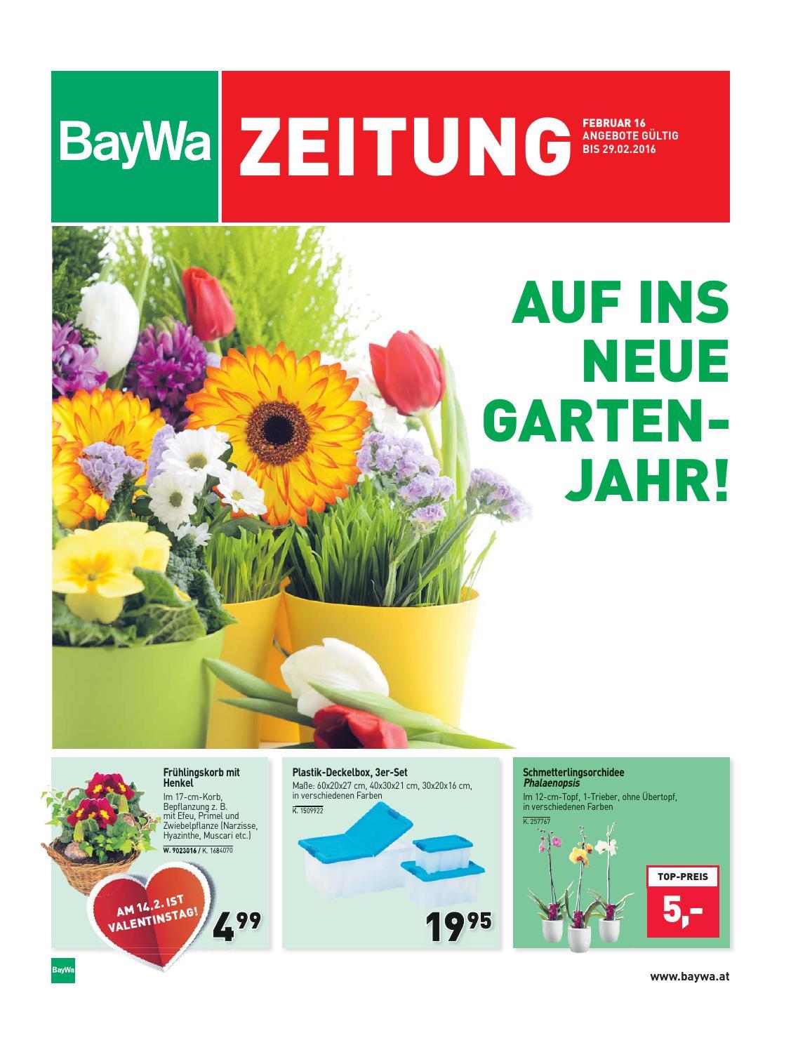 Baywa kw6 by Russmedia Digital GmbH - issuu