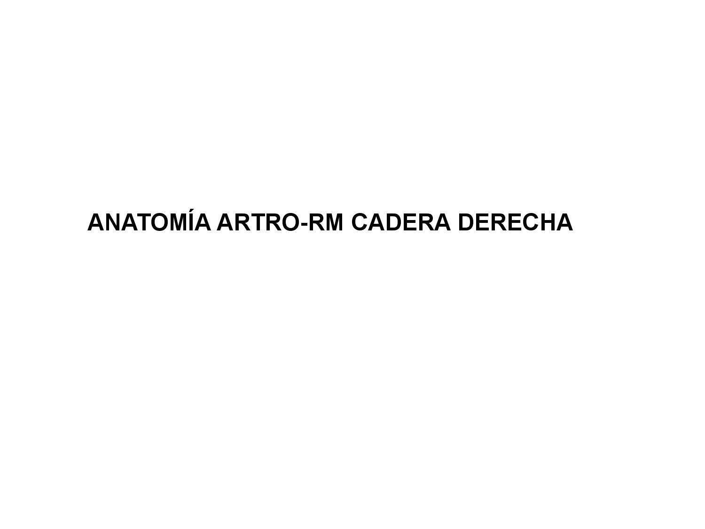 Anatomia ARTRO-RM CADERA by Musculo-esqueletico - issuu
