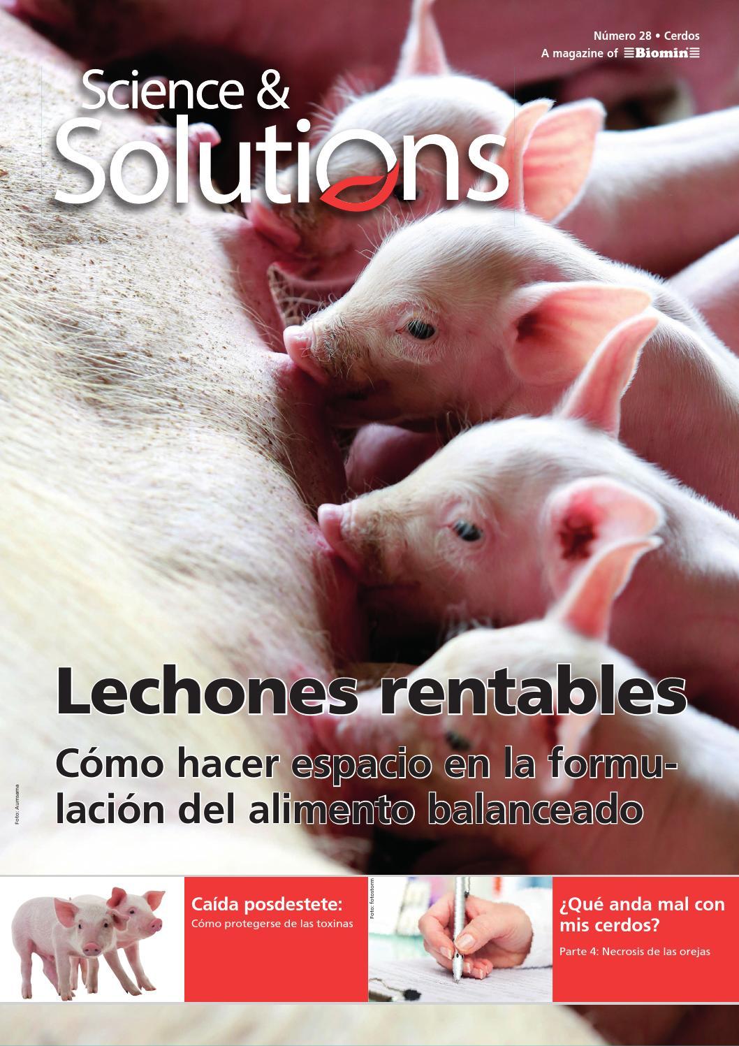 Science & Solutions #28 Cerdos (Español) by BIOMIN - issuu