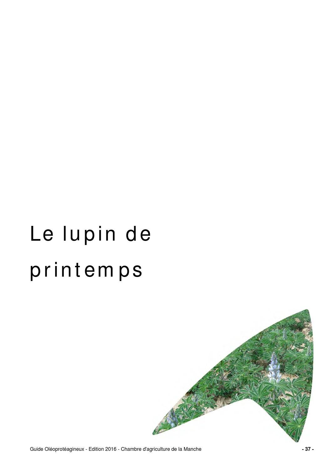 Guide lupin de printemps 2015 by chambre d 39 agriculture for Chambre d agriculture 37