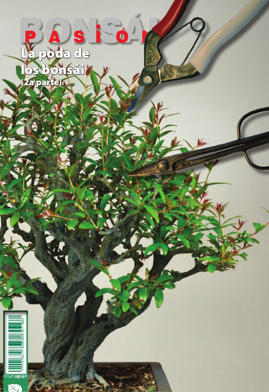 Bons i pasi n 83 by jardin press issuu for Oficina 3058 cajamar