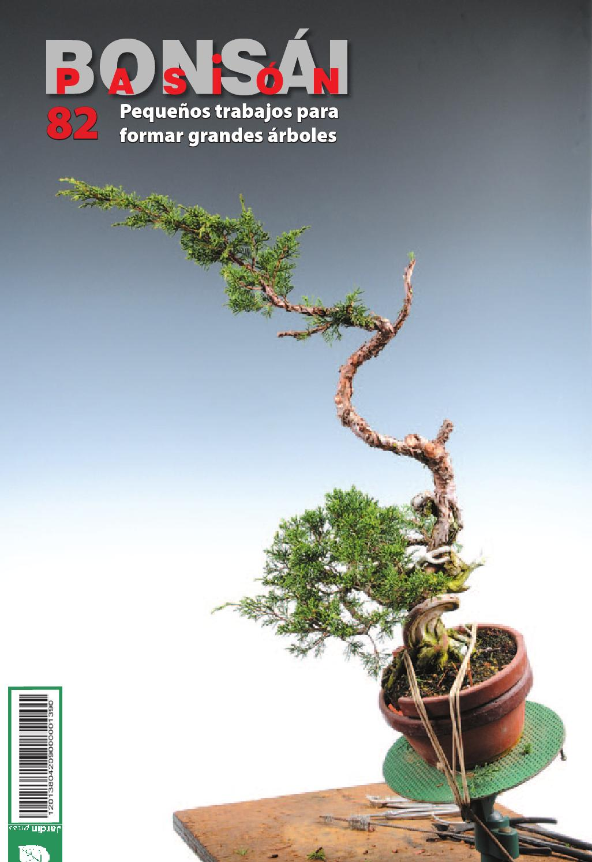 Bons i pasi n 82 by jardin press issuu for Oficina 3058 cajamar