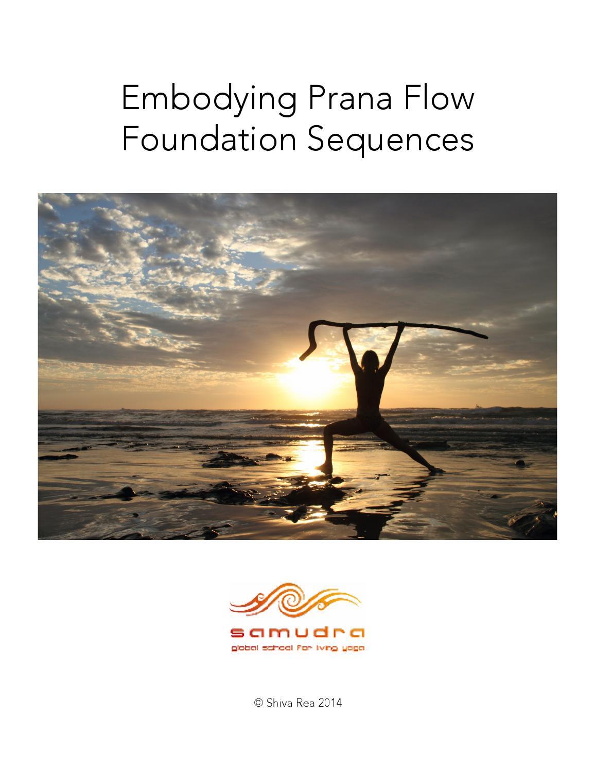 EFlow Seq Supplement