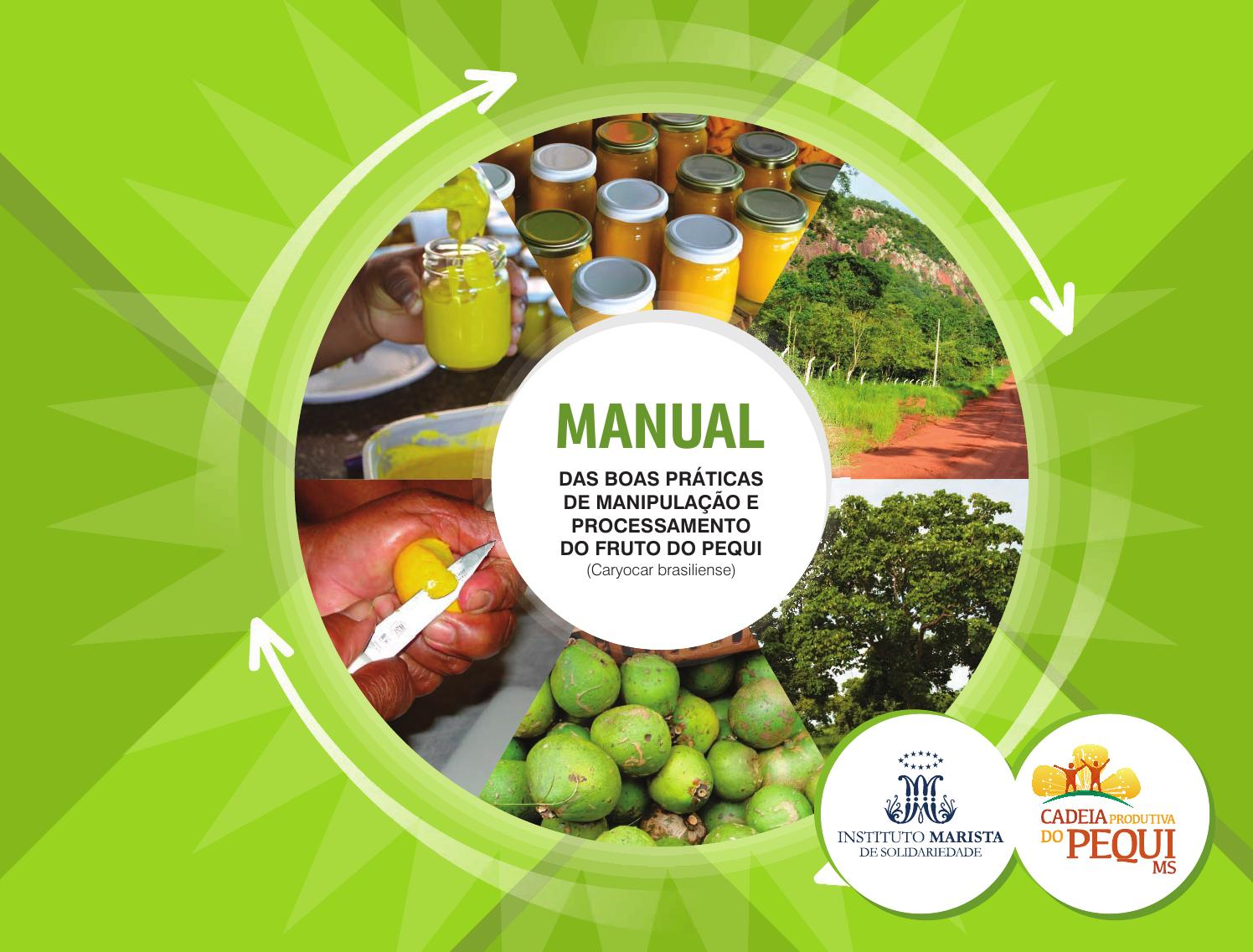 Manual Das Boas Pr Ticas De Manipula O E Processamento Do Pequi By