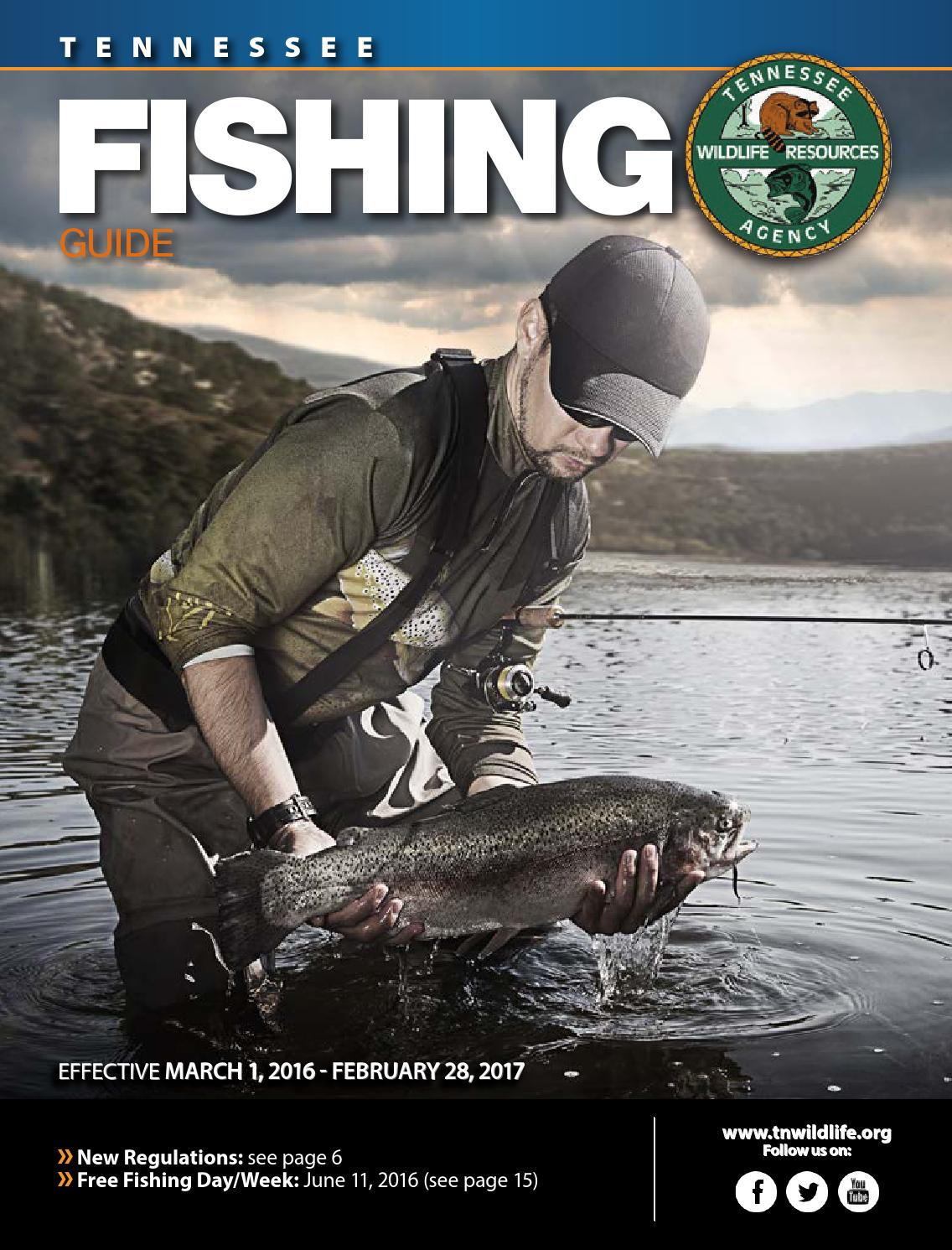 Tn fishing guide 2016 2017 by bingham group issuu for Tn fishing regulations 2017
