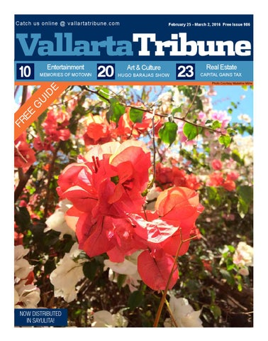 Issue 991 March 31 April 6 2016 By Vallarta Tribune Issuu