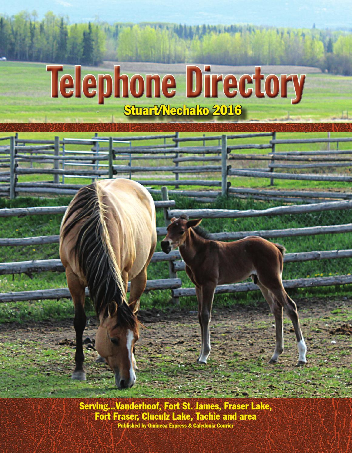Special Features - 2016 Telephone Directory by Black Press