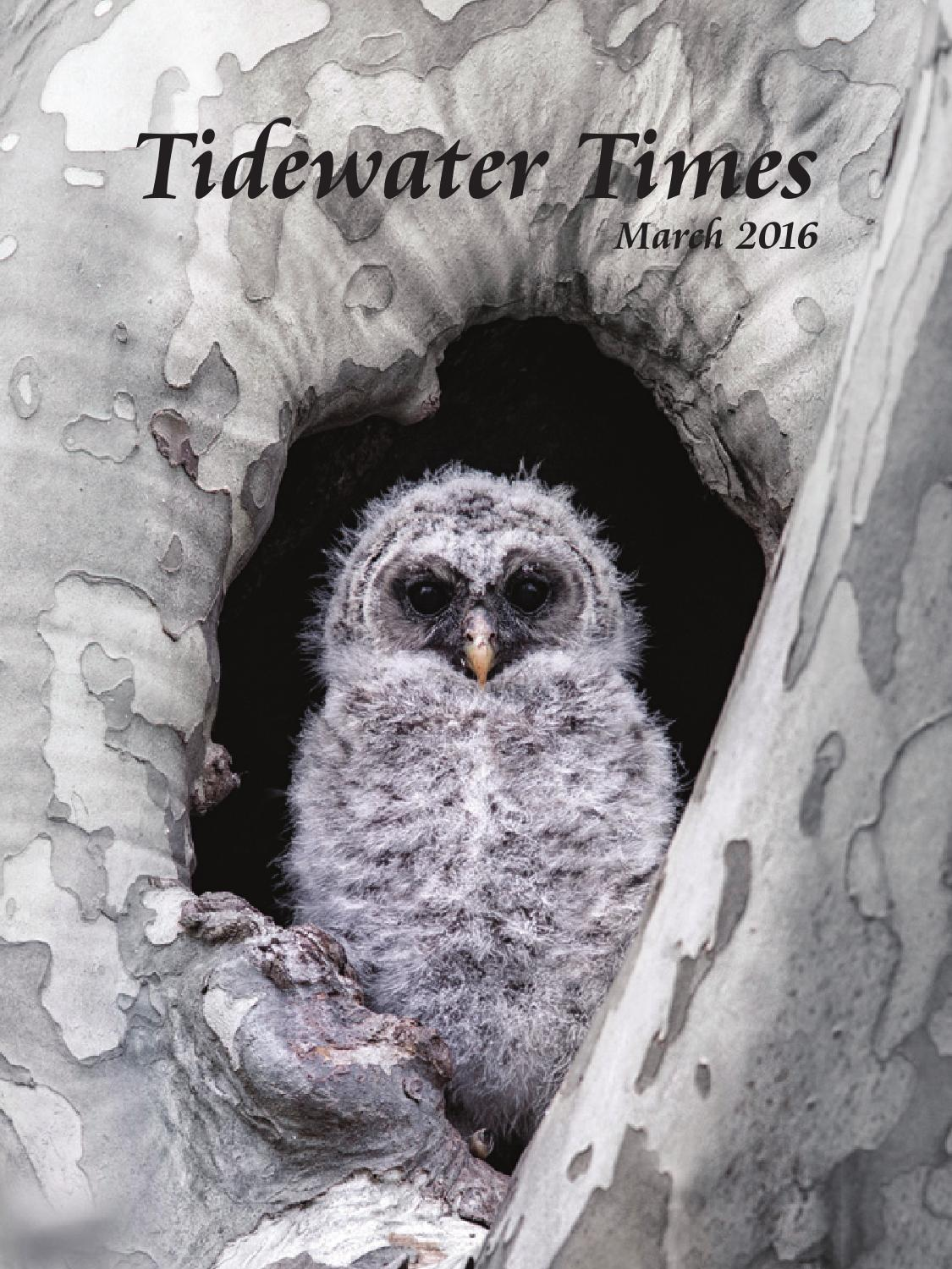 tidewater times march 2016 by tidewater times issuu