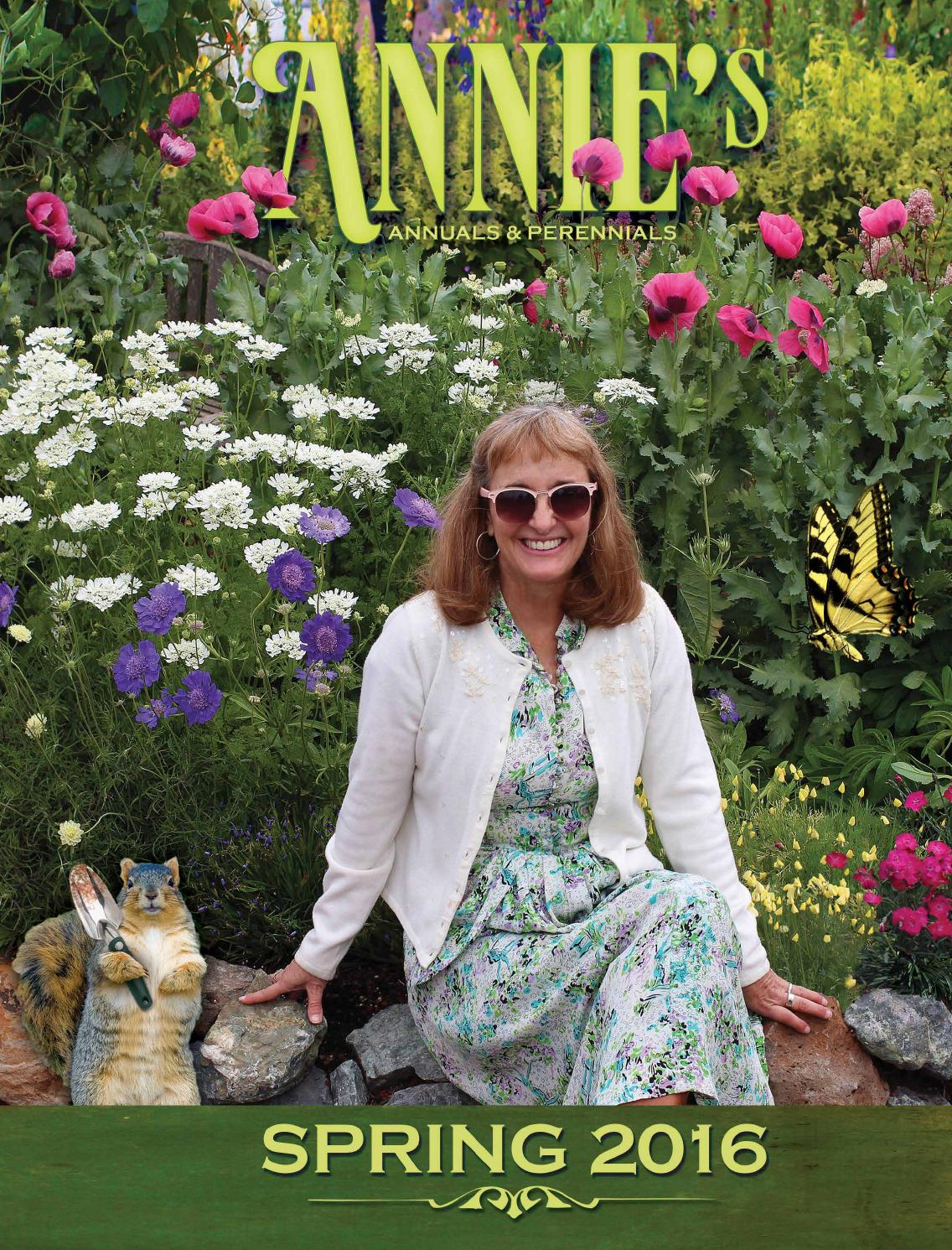Annies Annuals And Perennials Spring Catalog 2016 By Annies