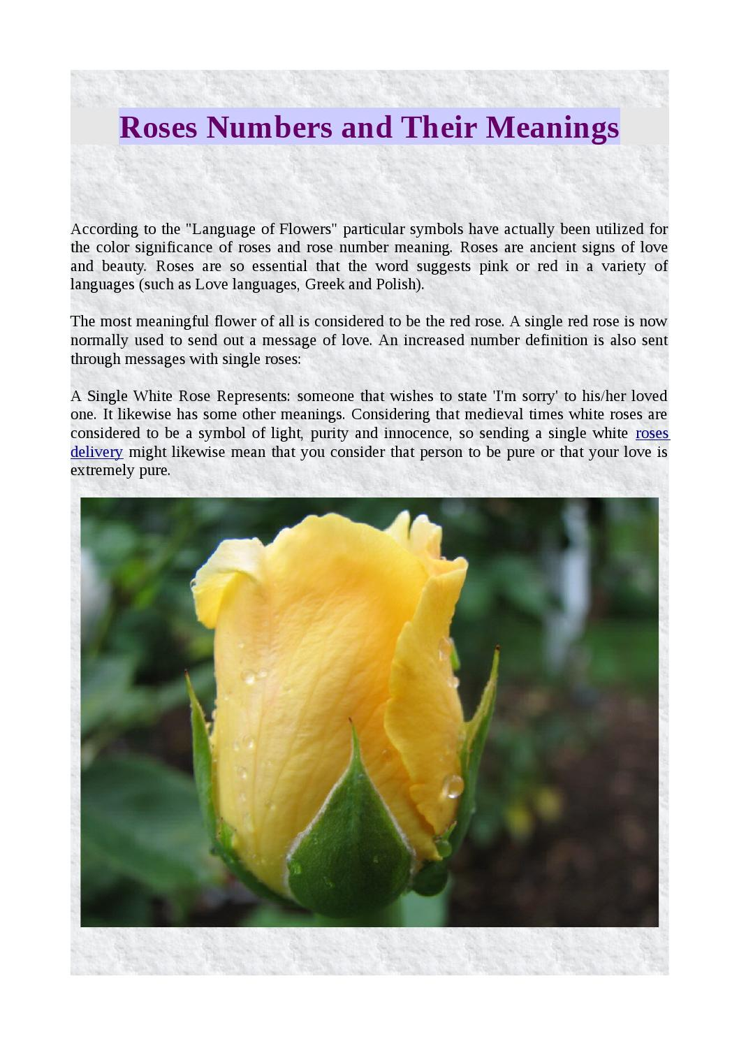 Roses Numbers And Their Meanings By Moyses Roses Issuu
