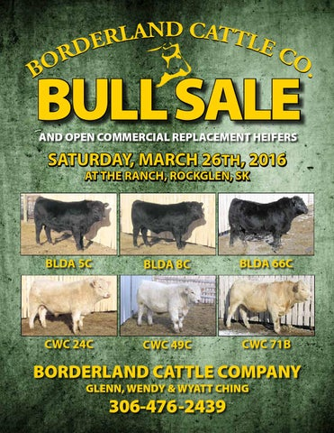 2016 borderland cattle company online guide