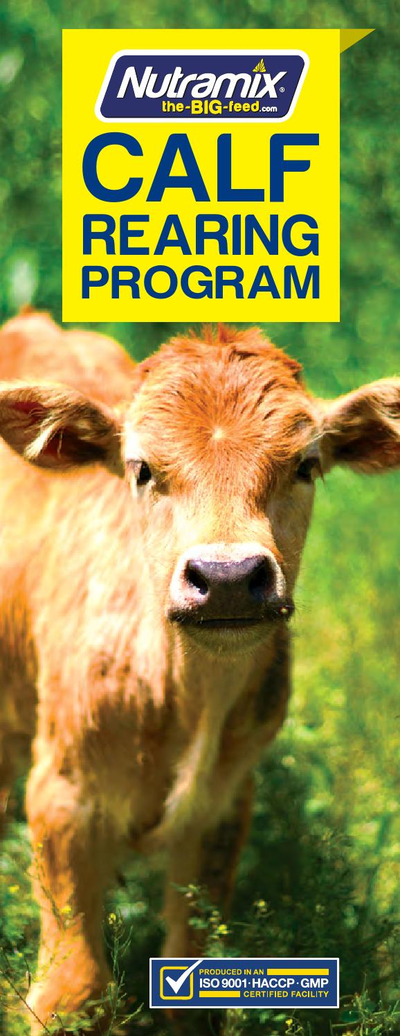 calf rearing Calf rearing: a practical guide - kindle edition by john moran download it once and read it on your kindle device, pc, phones or tablets use features like bookmarks, note taking and highlighting while reading calf rearing: a practical guide.