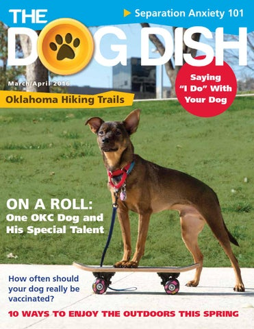 The dog dish magazine marchapril 2016 by the dog dish magazine page 1 solutioingenieria Images