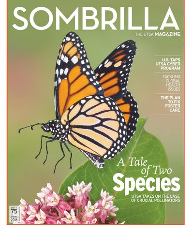 Sombrilla Magazine Spring 2016 By Utsa The University Of Texas