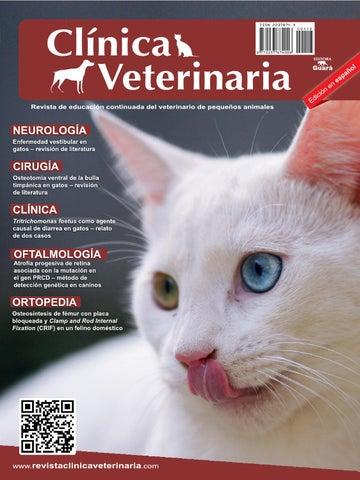 Clínica Veterinaria n. 113 - edición en español by Revista Clínica ...