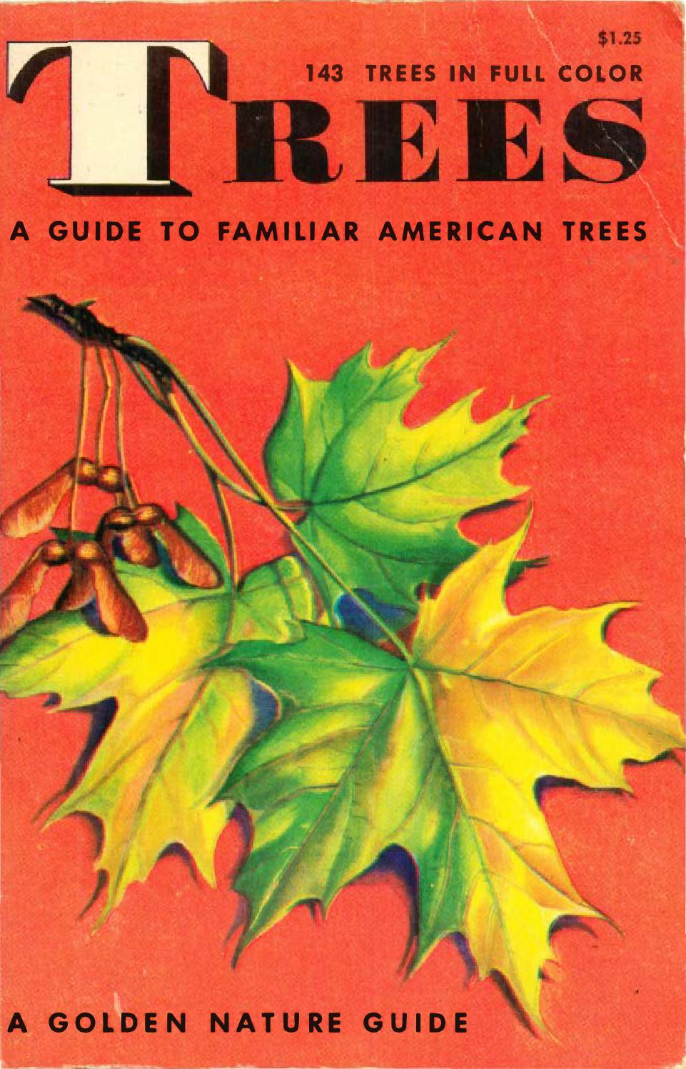 TREES - A Guide to Familiar American Trees - (A Golden Nature Guide ...