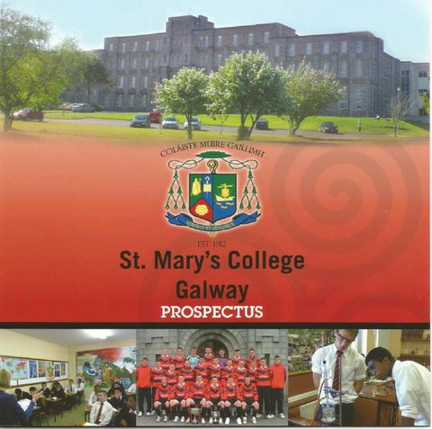 St Mary/'s Gaels Banner Flag