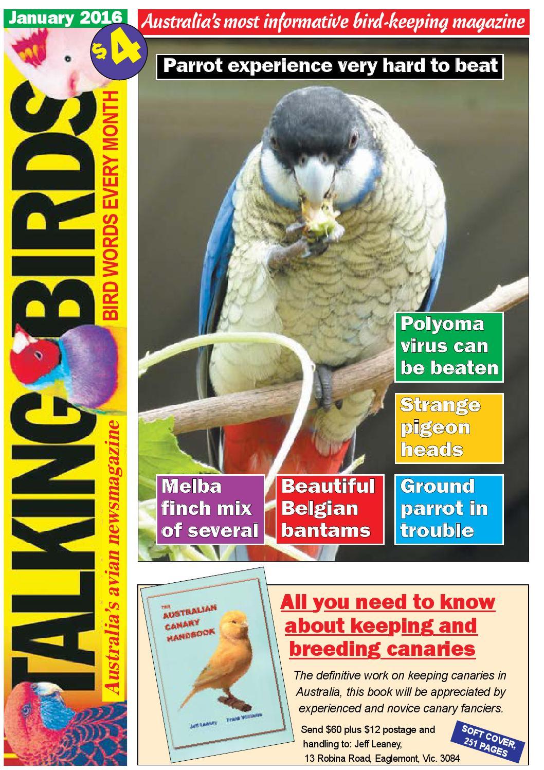 Talking Birds January 2016