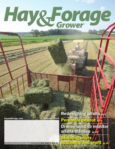 Hay & Forage Grower Magazine Issues by Hay & Forage Grower - issuu