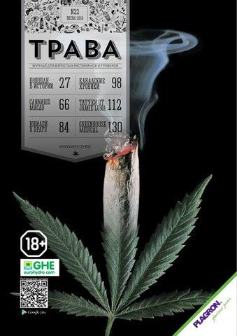 Прущие рецепты из конопли сколько времени в организме находится марихуана