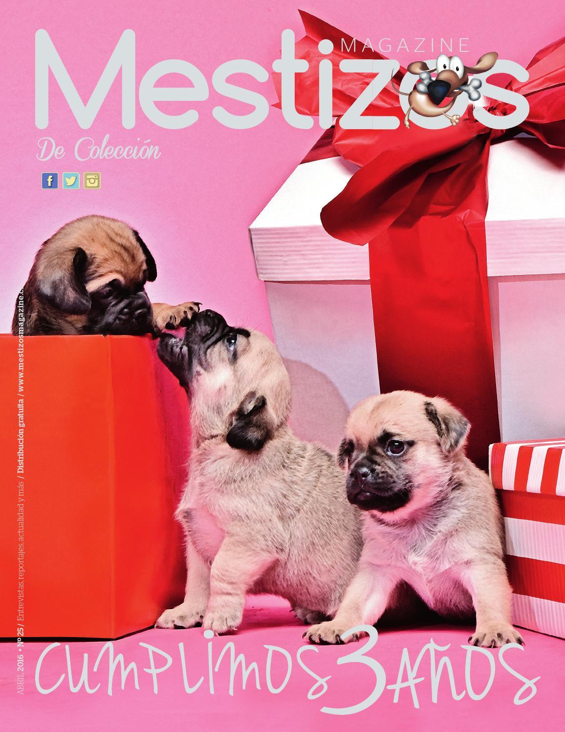 Revista Mestizos Magazine n° 25