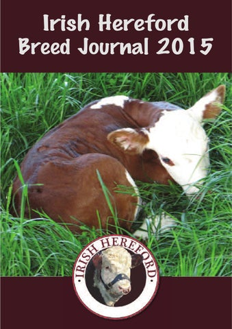 Irish Hereford Breed Journal 2015 By Irish Hereford Society Issuu