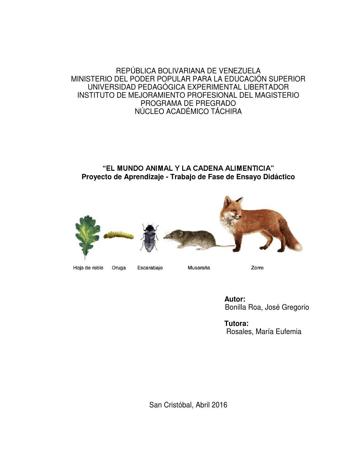 Revista informe final fase de ensayo didáctico j g bonilla by José ...
