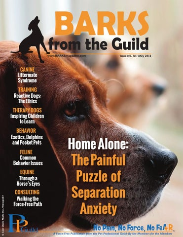 Barks From The Guild May 2016 By The Pet Professional Guild Issuu