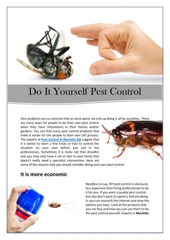 Do it Yourself Pest Control by Urbanwildlifecontrol - issuu