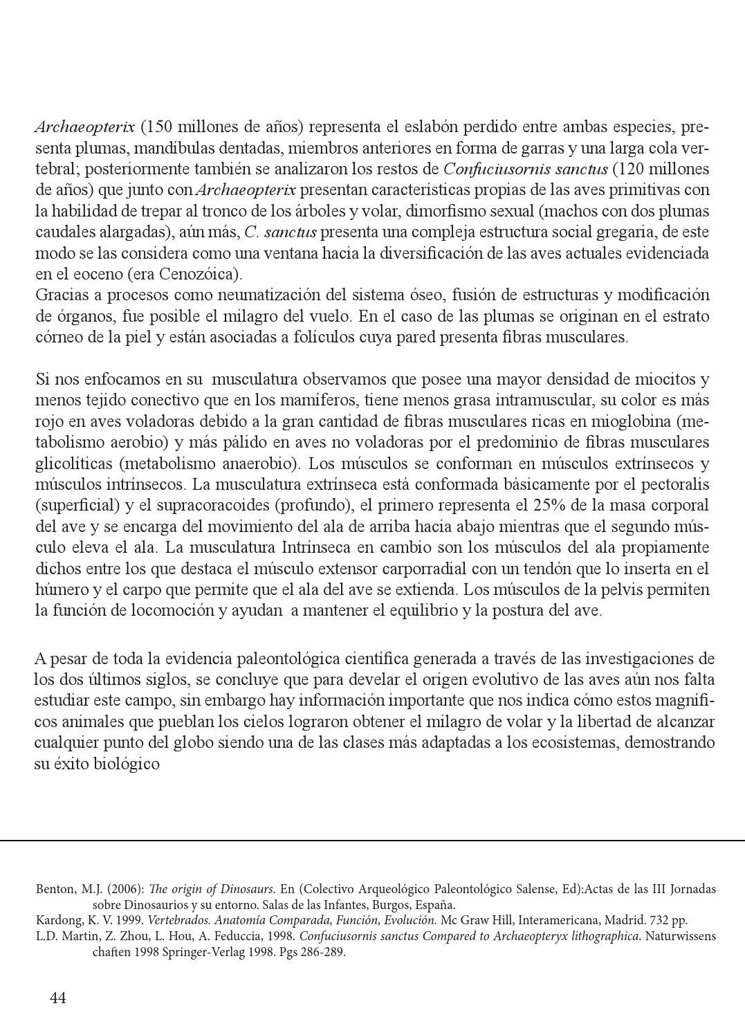 Atractivo Vertebrados Evolución De La Función Anatomía Comparada ...