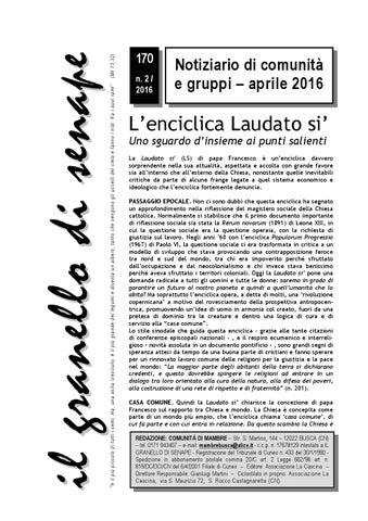 Stupidi tutti ( alcuni di più ) (Gli emersi narrativa) (Italian Edition)
