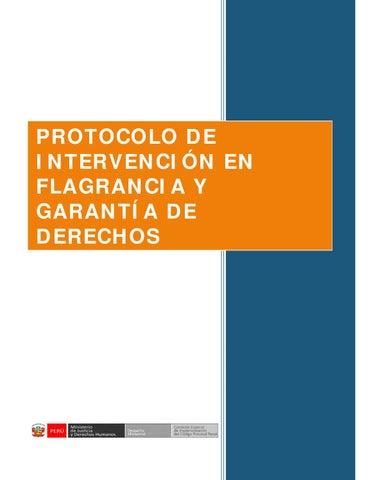Protocolo De Intervencion En Flagrancia By Division De Orden