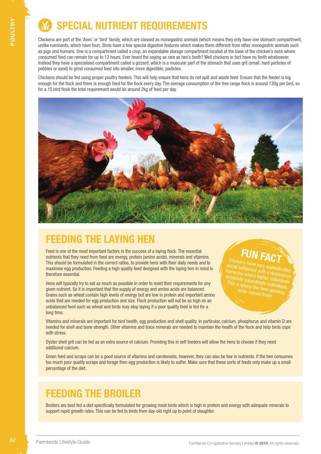 Farmlands Lifestyle Guide by Farmlands - issuu