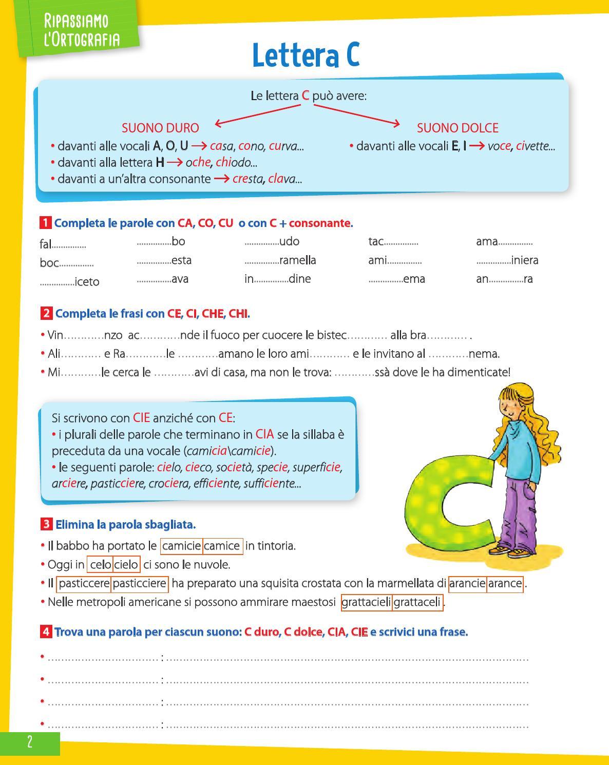 Molto Sorpresa! - Classe 4 - Grammatica by Gruppo Editoriale Raffaello  LC21
