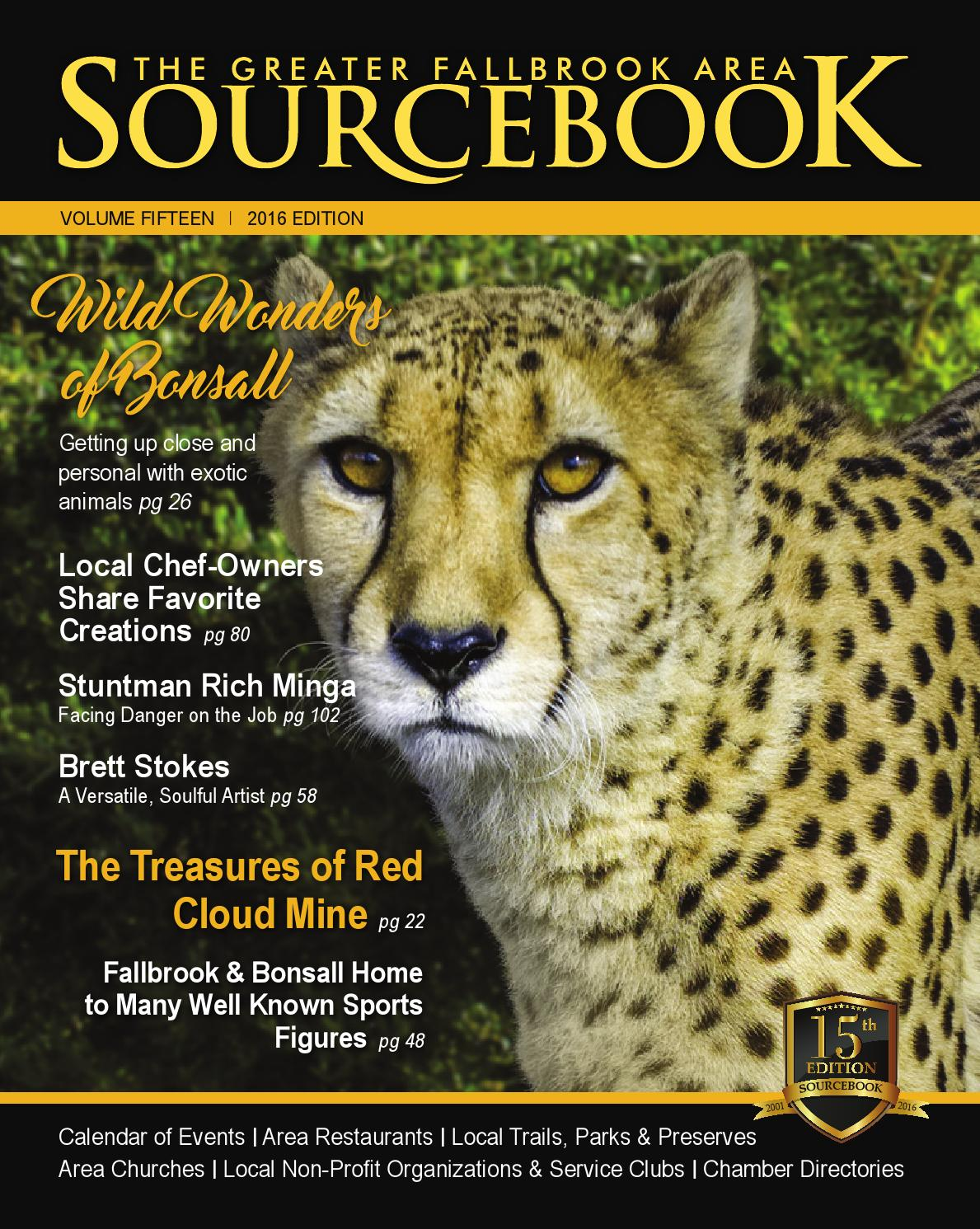 Fallbrook Sourcebook 2016 By Village News Inc