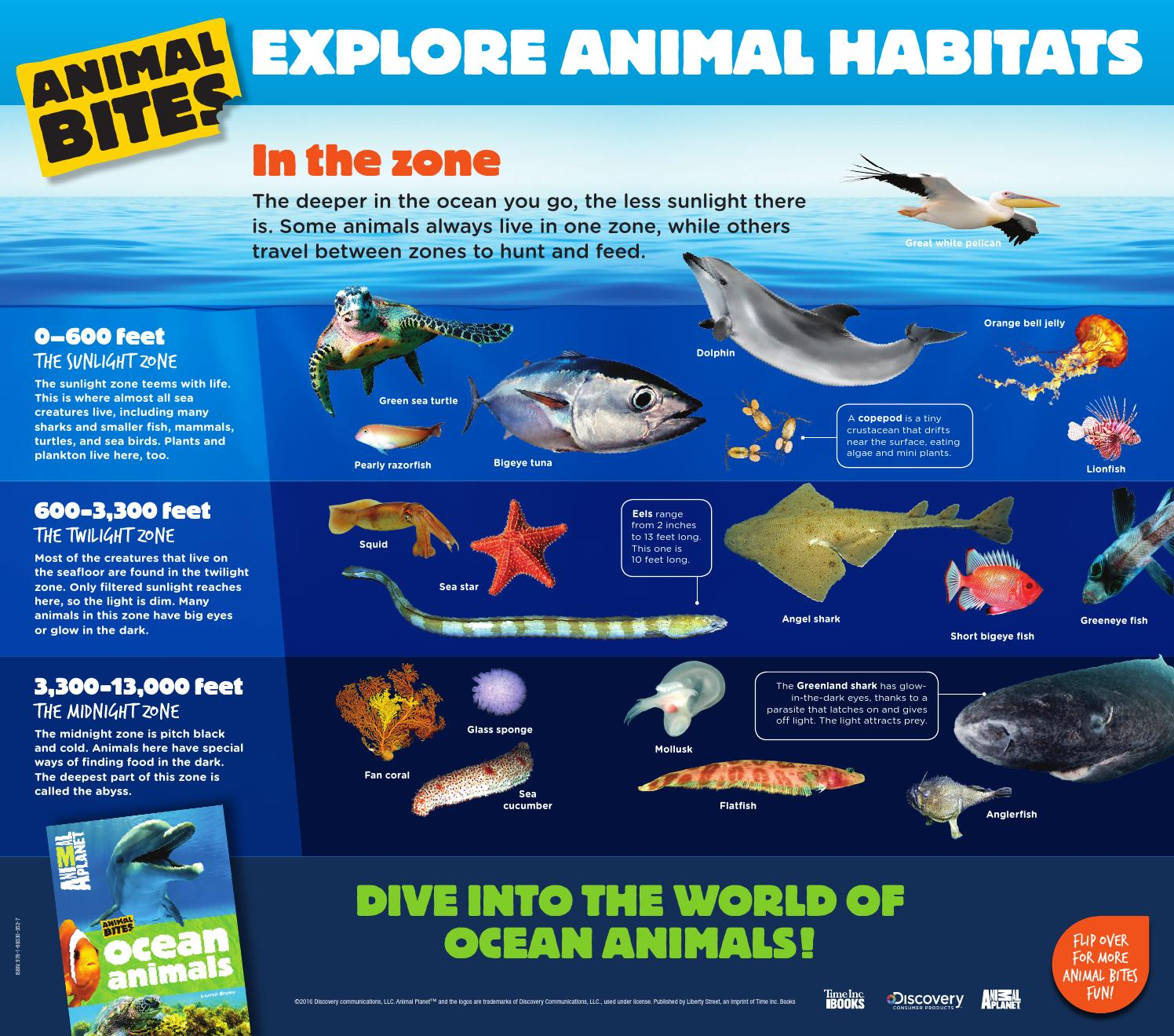 Animal Planet Animal Bites Books Posters By Time Inc