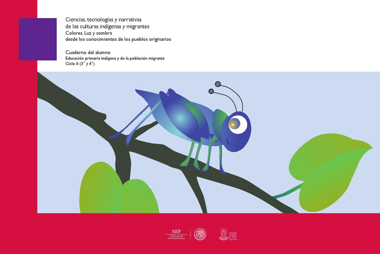 Ciencias colores y sombras ciclo II alumno by DGEI INDIGENA - issuu
