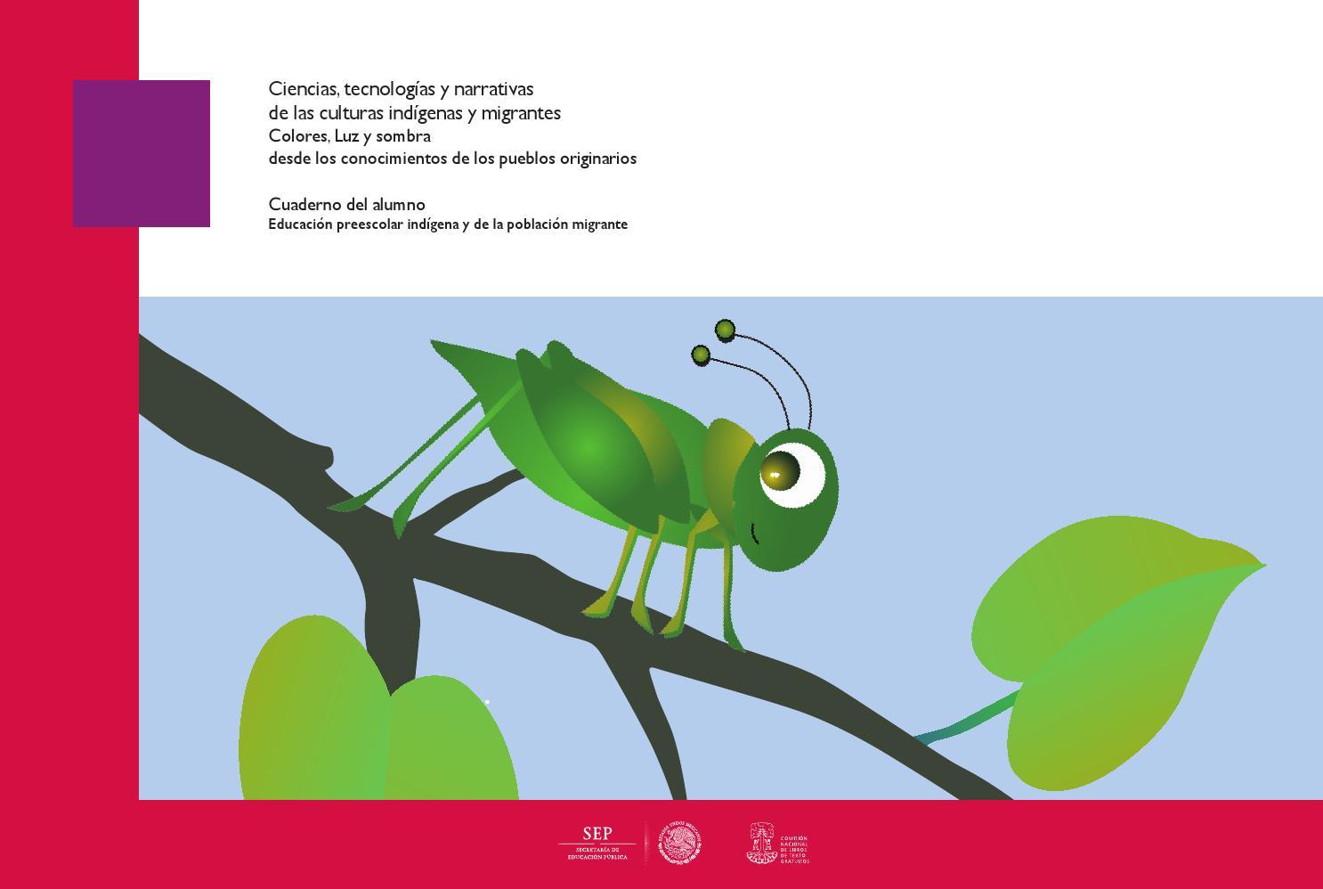 Ciencias colores y sombras preescolar alumno by DGEI INDIGENA - issuu