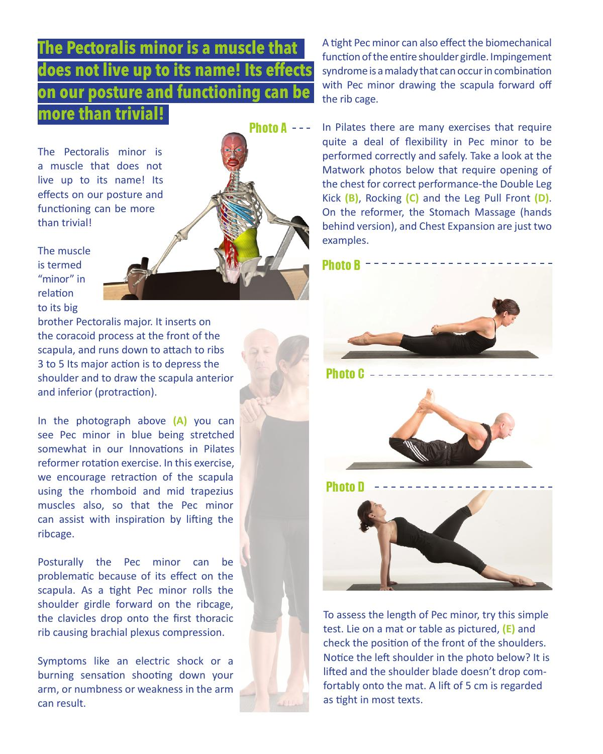 Pec Minor Article Preview by Innovations in Pilates - issuu