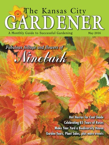 Kcg 5may16 By The Kansas City Gardener Issuu