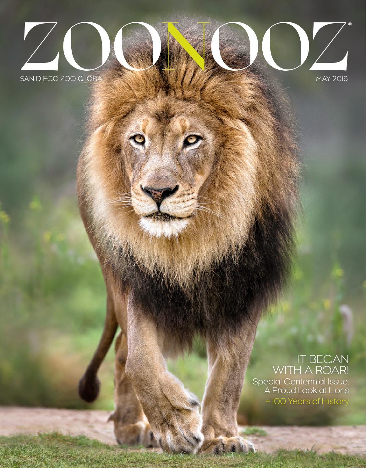 Zoonooz May 2016 By San Diego Zoo Global Issuu