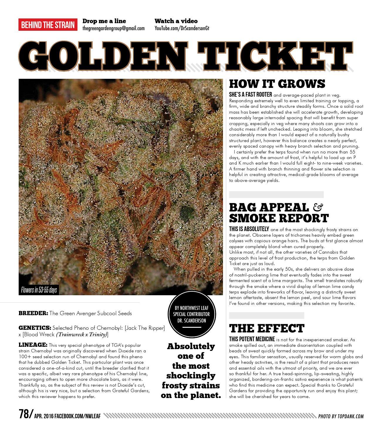 April 2016 - Issue #70 by Northwest Leaf / Oregon Leaf
