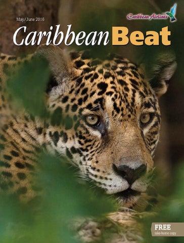 4802a126d Caribbean Dreams - Issue #3 by Caribbean Dreams Magazine - issuu