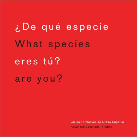 Escuela De Arte Murcia Brochure By Escuela De Arte Murcia