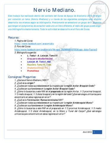 Nervio Mediano by Liborio Escobedo - issuu