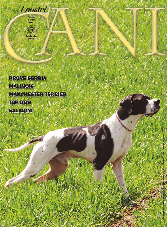 I Nostri Cani Ottobre 2016 By Enci Ente Nazionale Cinofilia
