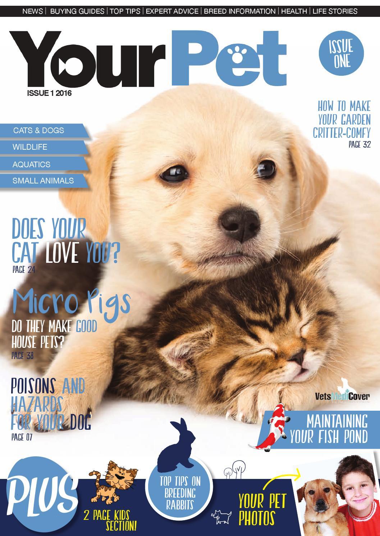 get your pet llc reviews