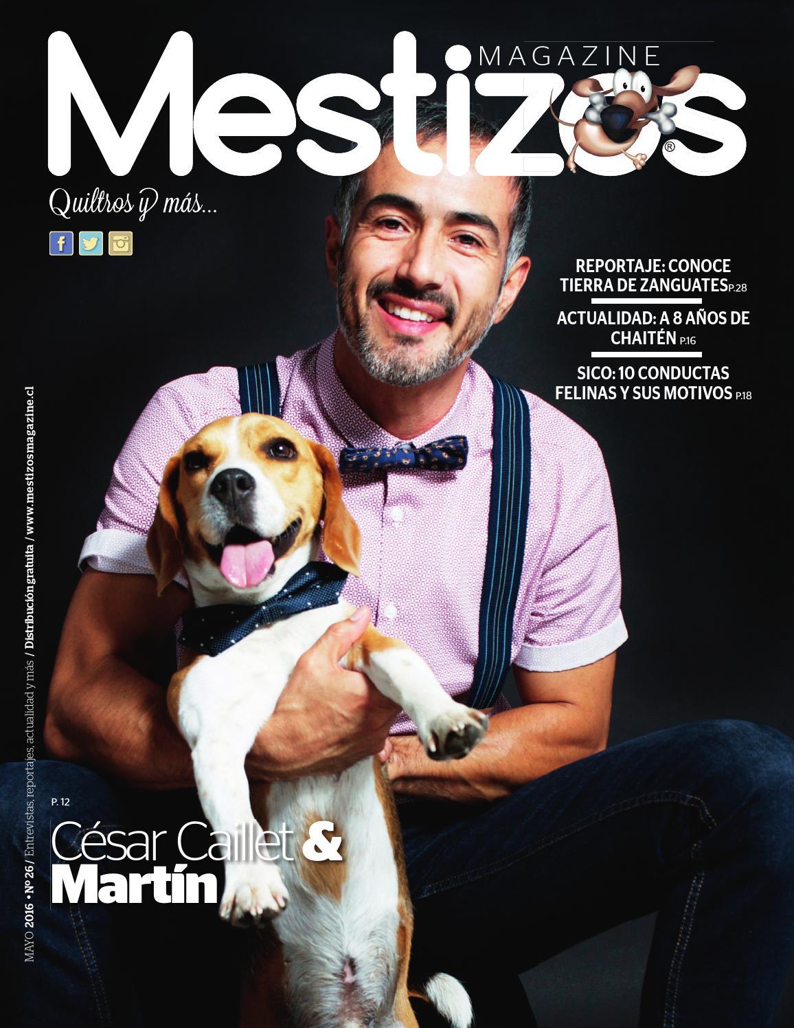 mestizos26