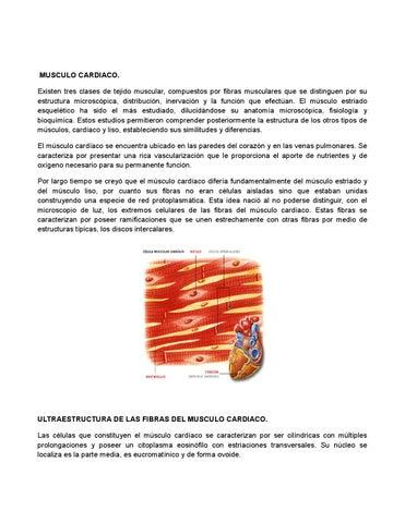 Liobro de iussi by fredy eliseo tajtaj lopez - issuu