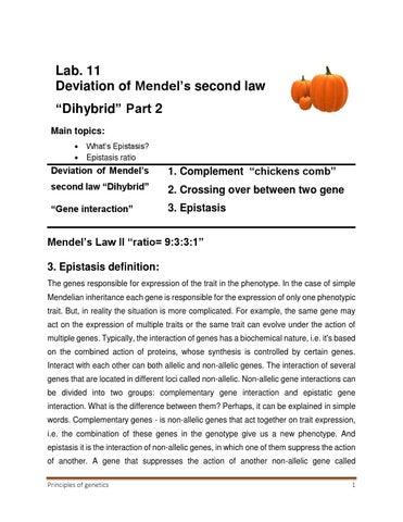 Lab 11 Deviation Of Mendels Law Ii Part 2 By Mona Moghazee Issuu